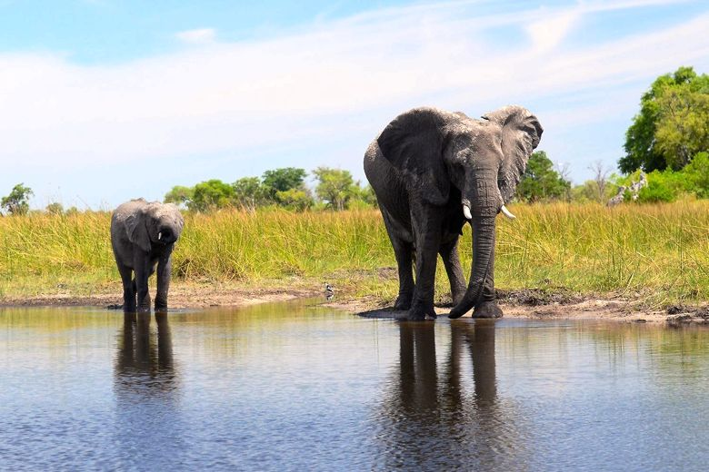 Our top holiday destinations for 2016 botswana
